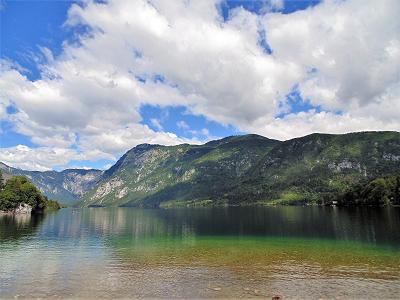 Fauna & Flora, Bossen & Bergen om en rond het meer van Bohinj
