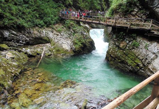 Een uitzicht op het heldergroene stromende water van de rivier de Radovna in de Vintgar kloof